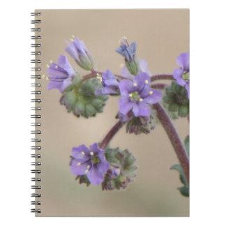 Wildflowers de la púrpura de Phacelia Libro De Apuntes Con Espiral