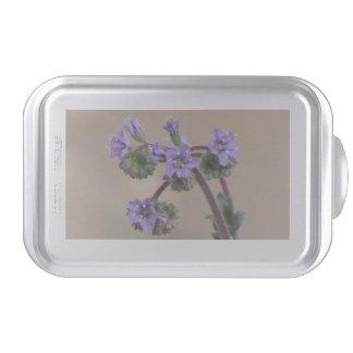 Wildflowers de la púrpura de Phacelia Molde Para Pasteles