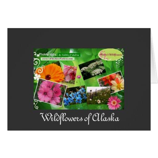 Wildflowers de la tarjeta de felicitación de Alask