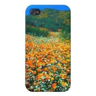 Wildflowers de las amapolas y de las palomitas de iPhone 4 fundas