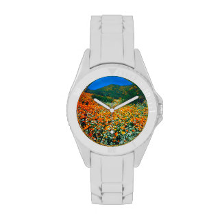 Wildflowers de las amapolas y de las palomitas de reloj