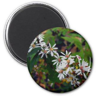 Wildflowers de Michigan Imán Redondo 5 Cm