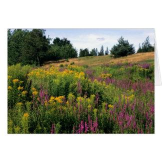 Wildflowers de Nuevo Brunswick Felicitación