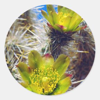 Wildflowers de plata del cactus de Cholla Pegatina Redonda