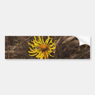 Wildflowers del amarillo del tono de la sepia pegatina de parachoque