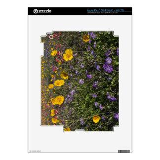Wildflowers del borde de la carretera en Tejas, pr iPad 3 Skins