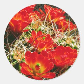 Wildflowers del cactus de la taza de clarete pegatina redonda