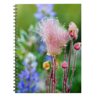 Wildflowers del humo de pradera en la arboleda 2 cuadernos