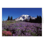 wildflowers del verano en la base del Monte Rainie Tarjeta