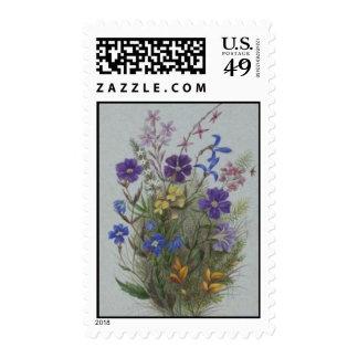 Wildflowers del vintage sellos