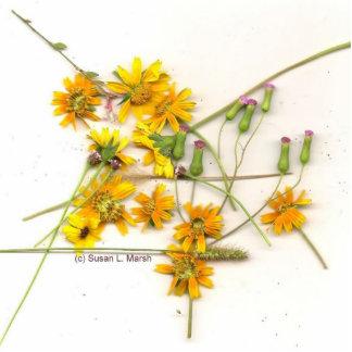 Wildflowers dispersados en amarillo y blanco esculturas fotográficas