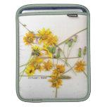 Wildflowers dispersados en amarillo y blanco fundas para iPads