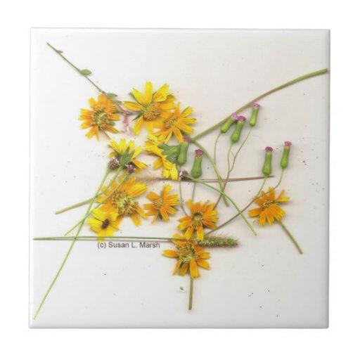 Wildflowers dispersados en amarillo y blanco teja