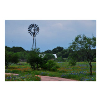 Wildflowers e impresión del molino de viento poster