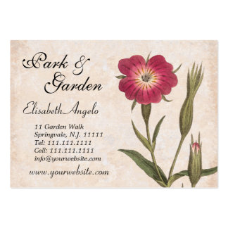 Wildflowers e insectos del collage del amante de tarjetas de visita grandes