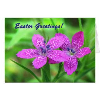 Wildflowers Easter Card