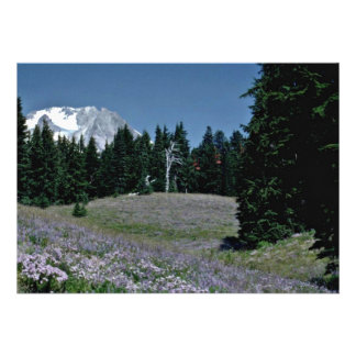 Wildflowers en el funcionamiento de esquí flores invitaciones personales