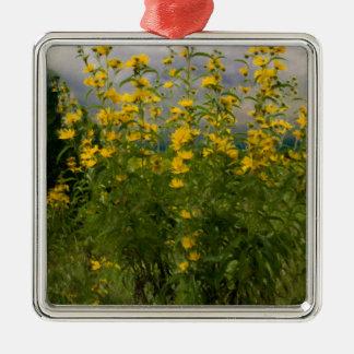 Wildflowers en un día nublado ornatos