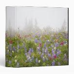 Wildflowers en un prado con niebla en el Na del Mo