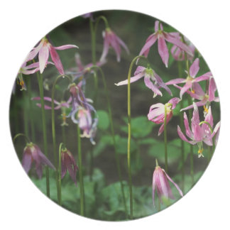 Wildflowers - Fawn Lilies Party Plate