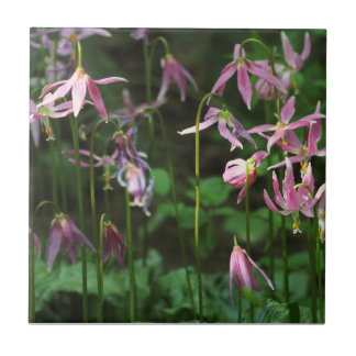 Wildflowers - Fawn Lilies Tiles