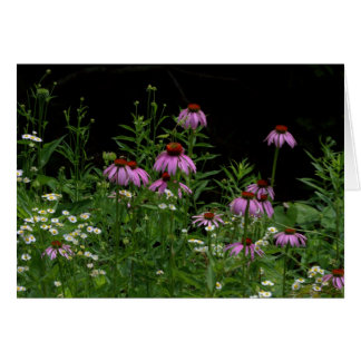 Wildflowers Felicitación