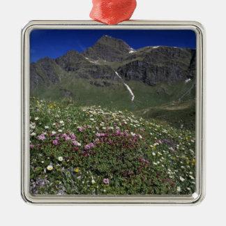 Wildflowers, floreciendo, montañas, Suiza Adorno Navideño Cuadrado De Metal