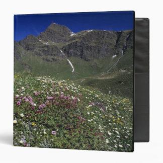 "Wildflowers, floreciendo, montañas, Suiza Carpeta 1 1/2"""