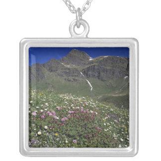 Wildflowers, floreciendo, montañas, Suiza Colgante Cuadrado
