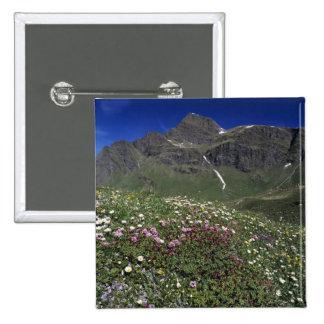 Wildflowers, floreciendo, montañas, Suiza Pin Cuadrado
