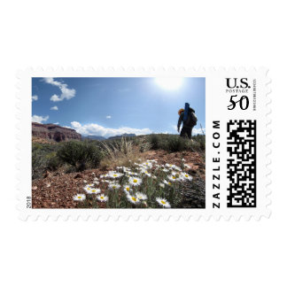 Wildflowers - Grand Canyon - Thunder River Trail Postage