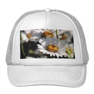 Wildflowers Hat