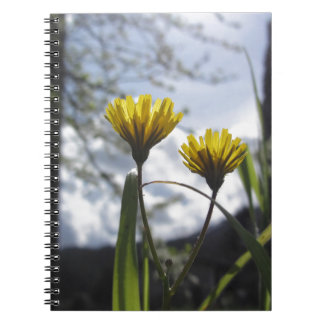 Wildflowers illuminated by the sunlight spiral notebook