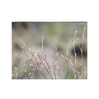 Wildflowers Impresión En Lienzo