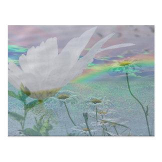 Wildflowers in 3d postcard