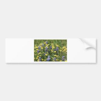 Wildflowers in Purple and Yellow Bumper Sticker