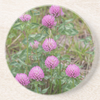 wildflowers in the filed drink coaster