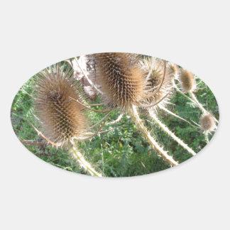 Wildflowers in the woods oval sticker