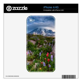 Wildflowers iPhone 4S Decal