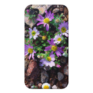 Wildflowers iPhone 4 Cases