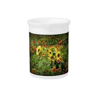 Wildflowers Jarra