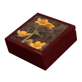 Wildflowers: Marsh Marigold Gift Box
