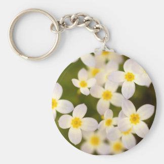 Wildflowers minúsculos de Bluet Llavero Redondo Tipo Pin