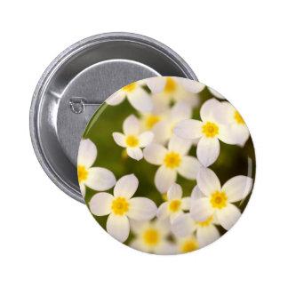 Wildflowers minúsculos de Bluet Pin Redondo 5 Cm