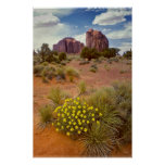 Wildflowers - Monument Valley - Arizona Poster