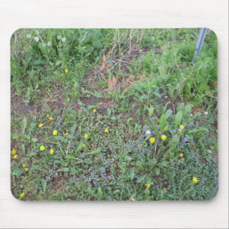 Wildflowers Mousepad