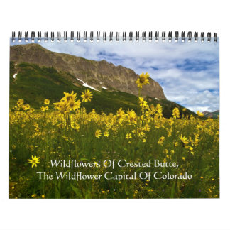 Wildflowers Of Crested Butte Calendar