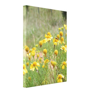 Wildflowers of Summer Wrapped Canvas Print