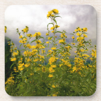 Wildflowers on a Cloudy Day Drink Coaster
