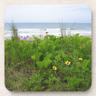 Wildflowers on the beach beverage coasters